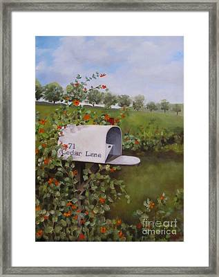 71 Cedar Lane Framed Print by Karen Olson