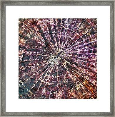 72-offspring While I Was On The Path To Perfection 72 Framed Print
