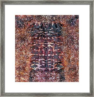 73-offspring While I Was On The Path To Perfection 73 Framed Print