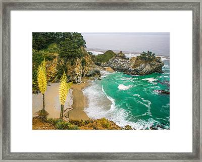 #7842 - Big Sur, California Framed Print