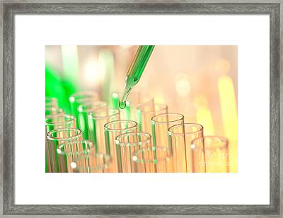 Laboratory Experiment In Science Research Lab Framed Print