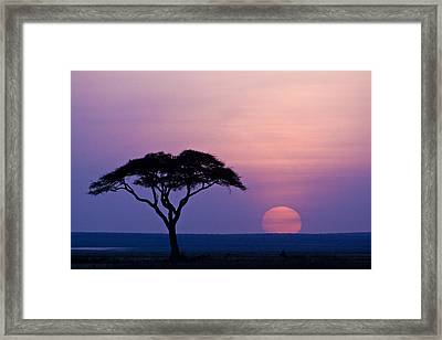 African Sunrise Framed Print