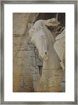 Horse In The Fountain  Framed Print by JAMART Photography
