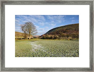 Muker Meadows Framed Print by Nichola Denny