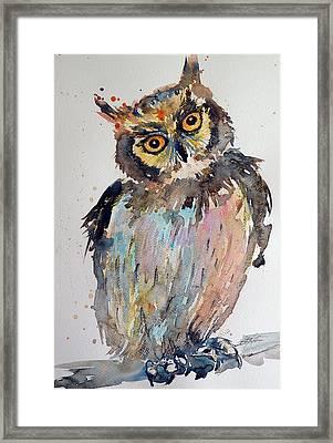 Owl Framed Print by Kovacs Anna Brigitta