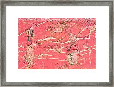 Red Metal Framed Print by Tom Gowanlock