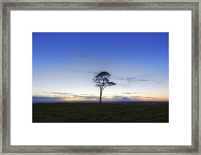 Roundway Hill - England Framed Print by Joana Kruse