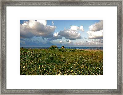 Framed Print featuring the photograph 8- Sunflowers In Paradise by Joseph Keane