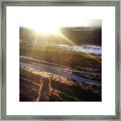 Instagram Photo Framed Print by Jaco Hassing