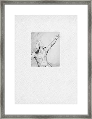 87 - 2 Framed Print