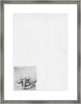 87 - 5 Framed Print
