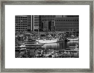 Baltimore Inner Harbor Framed Print by Jim Archer