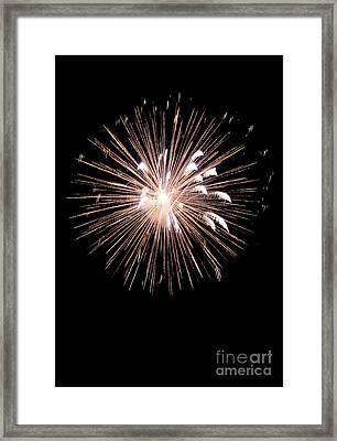 Fireworks Framed Print by Brent Parks