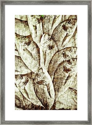 Fresh Fish Framed Print by Tom Gowanlock