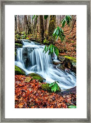 Framed Print featuring the photograph Little Laurel Branch by Thomas R Fletcher
