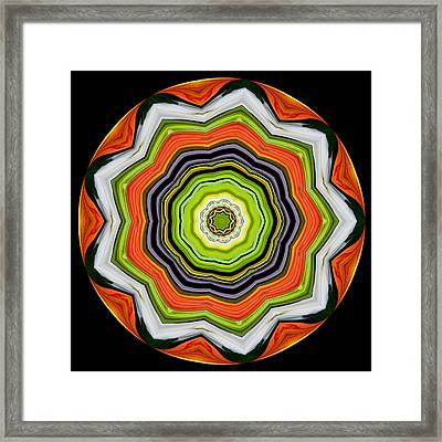 Framed Print featuring the photograph 9-petaled Lucky Shamrock by Baha'i Writings As Art