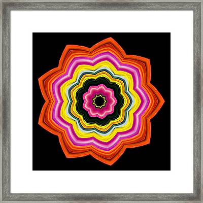 Framed Print featuring the photograph 9-petaled Roses by Baha'i Writings As Art