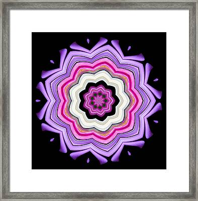 Framed Print featuring the photograph 9-petaled Violet by Baha'i Writings As Art