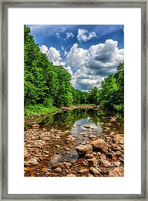 Williams River  Framed Print by Thomas R Fletcher