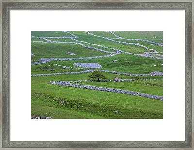 Yorkshire Dales - England Framed Print by Joana Kruse