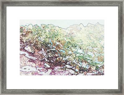 9708 Framed Print by Jim Simms