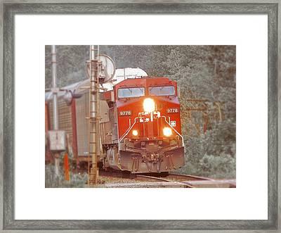 9778 Focused Framed Print by Scott Ballingall