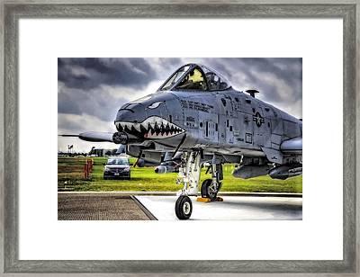 A-10 Thunderbolt  Framed Print