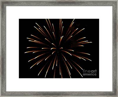 A 4th Of July Flower Framed Print by Robert Wolverton Jr