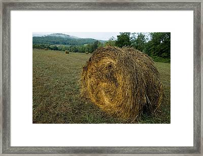 A Bail Of Hay In A Field In Tuscany Framed Print by Todd Gipstein