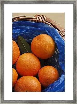 A Basket Of Oranges Framed Print by Steve Outram