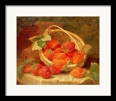 Strawberry Framed Prints