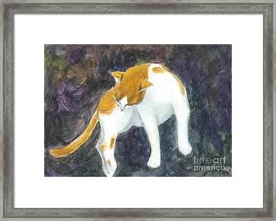 A Bathing Cat Framed Print