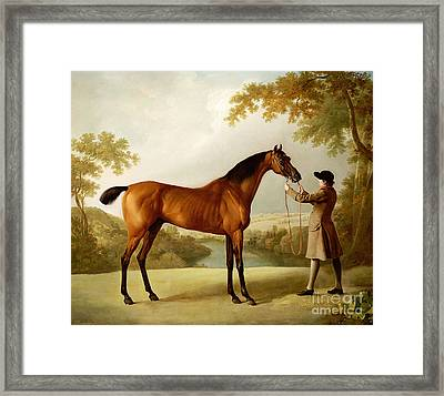 A Bay Racehorse Held By A Groom In An Extensive Landscape Framed Print