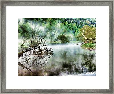A Beautiful Foggy Spring Morning Framed Print by Lanjee Chee
