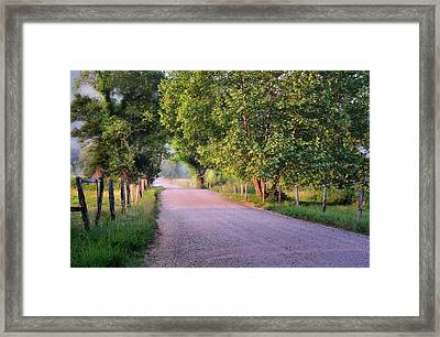 Morning Light Sparks Lane  Framed Print by Thomas Schoeller