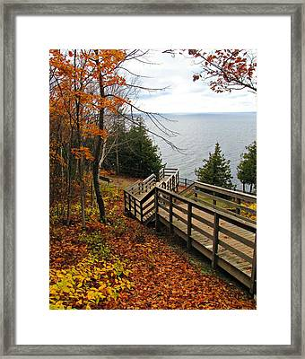 Framed Print featuring the photograph A Beautiful Walk by Greta Larson Photography
