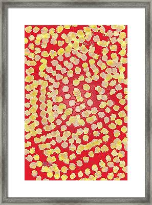 A Bed Of Red Framed Print by Nathan Rodholm