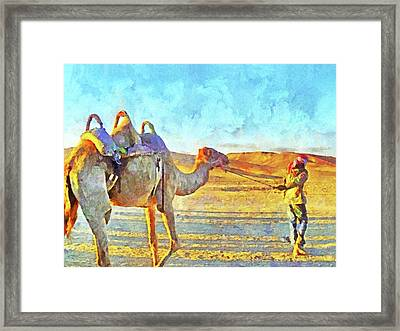 A Bedouin And His Camel Framed Print