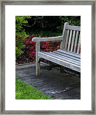 A Bench In The Garden Framed Print
