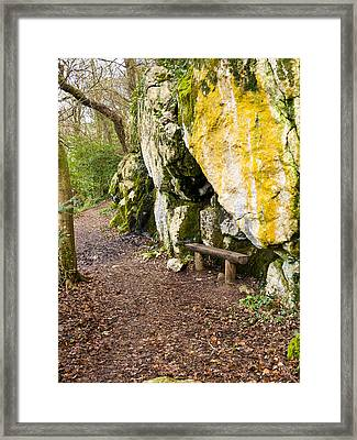 A Bench In The Woods Framed Print by Rae Tucker