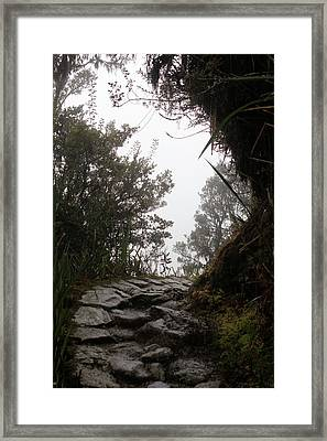 A Bend In The Path Framed Print