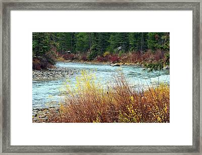 A Bend In The River Framed Print by Lynn Bawden