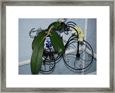 A Bicycle Built For Two Framed Print