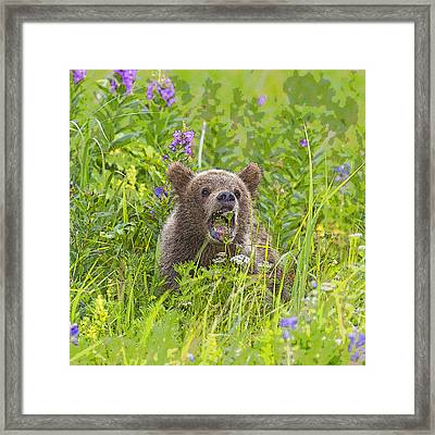 A Big Bite For A Little Cub- Abstract Framed Print