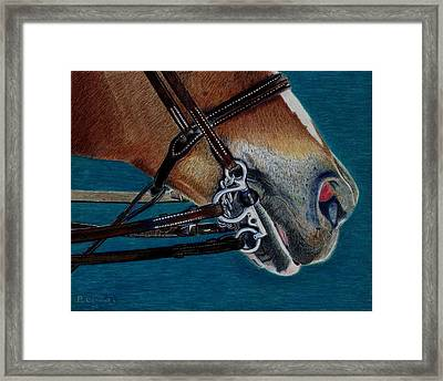 A Bit Of Control - Horse Bridle Painting Framed Print