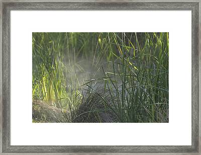 A Bit Of Fog Framed Print