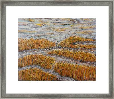 A Bit Of The Pagan River Marsh Framed Print by Don Williams