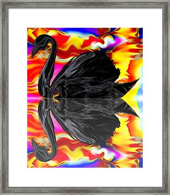 A Black Swan's Passionate Sunrise Framed Print by Abstract Angel Artist Stephen K