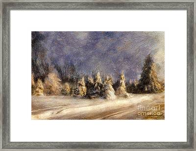 A Blizzard Of Light Framed Print