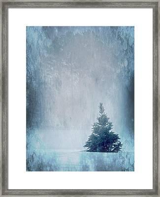 A Blue Christmas Framed Print